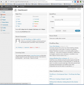 WP Editor's view of the Dashboard